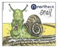 northern snail 300